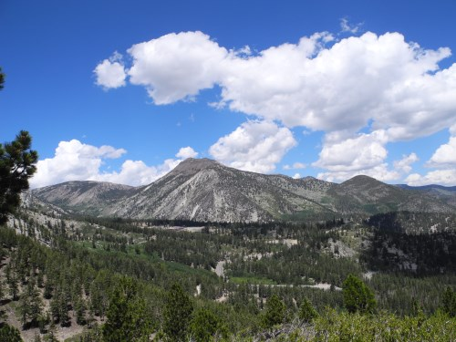 Great views of Mt. Rose from the Slide Mountain Trail