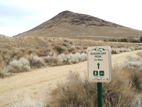 Trail on the way to Sugarloaf Peak, Sparks / Spanish Springs, Nevada, NV