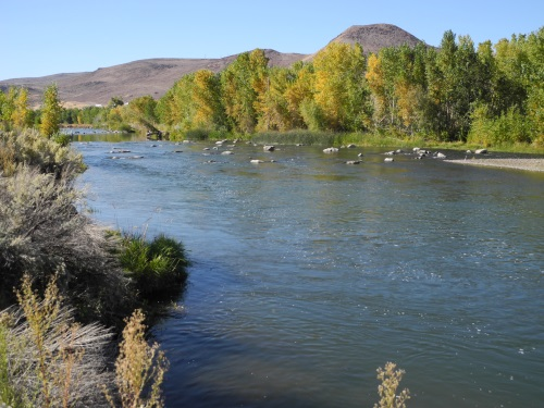 McCarran Ranch Preserve, Truckee River, Reno, Nevada, NV